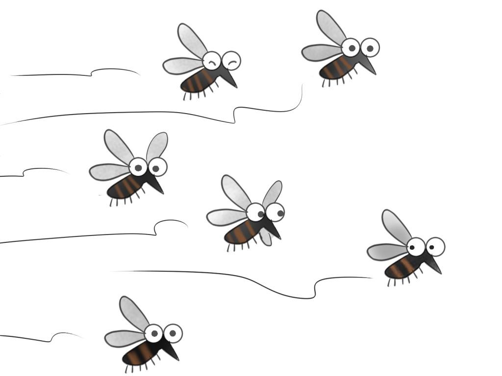 蚊に刺されない方法!これであなたも蚊の嫌われ者に!