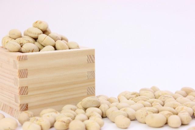 節分の豆の名前って何?生の大豆とは違うのでご注意!