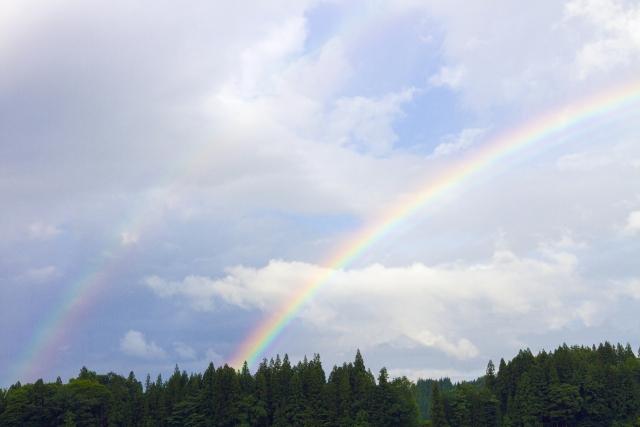 虹ができる仕組みを簡単に解説!ポイントは光の反射にあり!