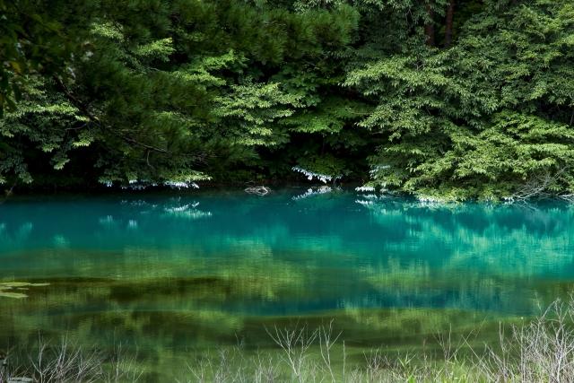 池、湖、沼の違い!曖昧なそれぞれの違いを解説!