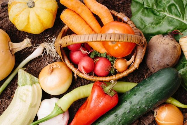 有機栽培と無農薬栽培の違い!両方ともとても大変な農法だった!